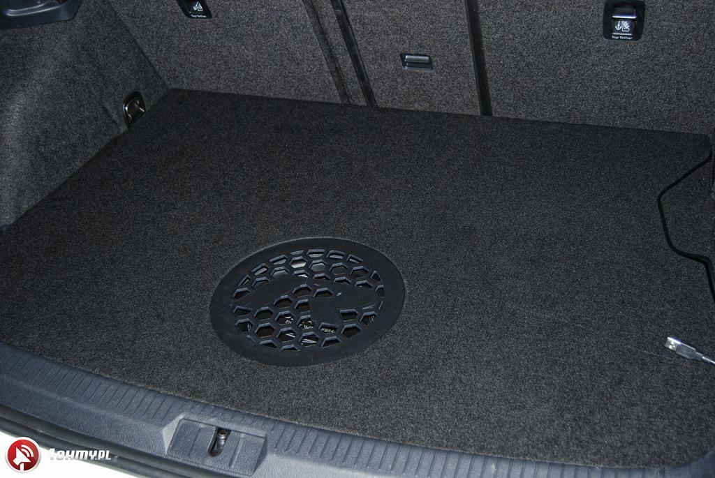10GolfRcaraudio (Copy)